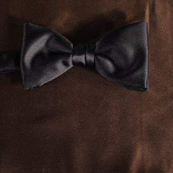 bow tie brown - unicolour, design 210029
