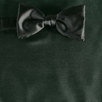 bow tie dark green - unicolour, design 210069