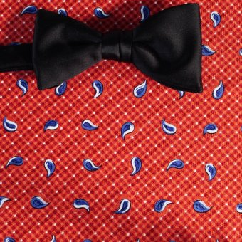 bow tie red, white, blue, terracotta - paisley, design 200142