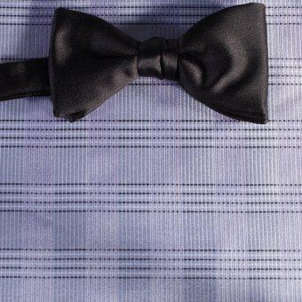 bow tie silver, blue, purplec - stripes, design 200209